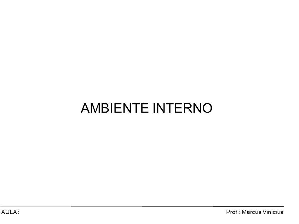 Prof.: Marcus ViníciusAULA : AMBIENTE INTERNO