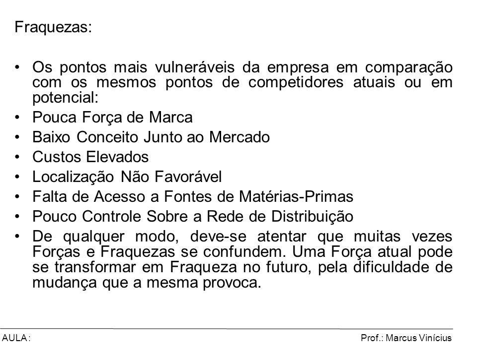Prof.: Marcus ViníciusAULA : Fraquezas: Os pontos mais vulneráveis da empresa em comparação com os mesmos pontos de competidores atuais ou em potencia