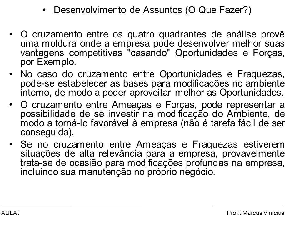 Prof.: Marcus ViníciusAULA : Desenvolvimento de Assuntos (O Que Fazer?) O cruzamento entre os quatro quadrantes de análise provê uma moldura onde a em