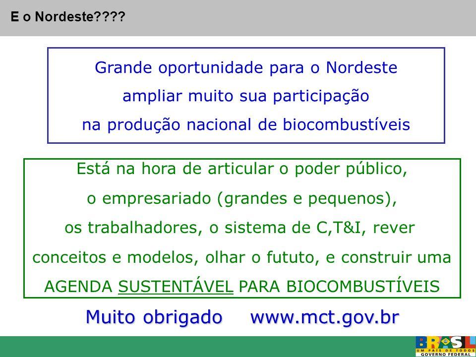 Grande oportunidade para o Nordeste ampliar muito sua participação na produção nacional de biocombustíveis Muito obrigado www.mct.gov.br E o Nordeste?