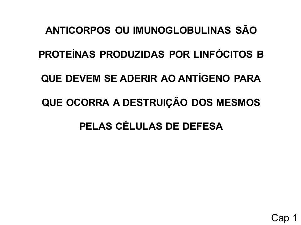 ANTICORPOS OU IMUNOGLOBULINAS SÃO PROTEÍNAS PRODUZIDAS POR LINFÓCITOS B QUE DEVEM SE ADERIR AO ANTÍGENO PARA QUE OCORRA A DESTRUIÇÃO DOS MESMOS PELAS CÉLULAS DE DEFESA Cap 1