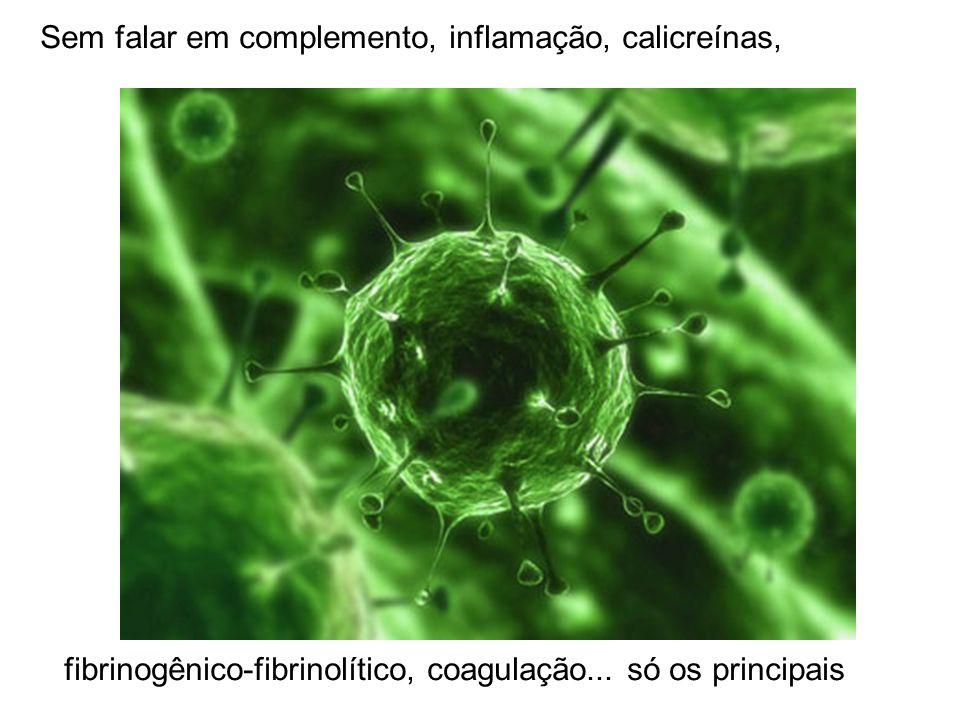 Sem falar em complemento, inflamação, calicreínas, fibrinogênico-fibrinolítico, coagulação... só os principais