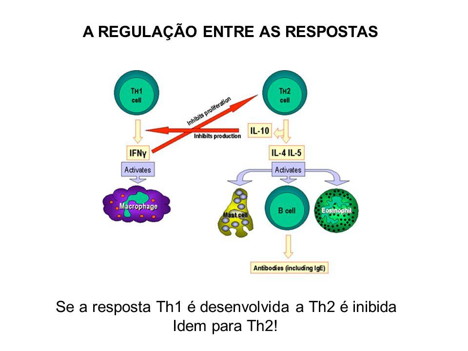 A REGULAÇÃO ENTRE AS RESPOSTAS Se a resposta Th1 é desenvolvida a Th2 é inibida Idem para Th2!