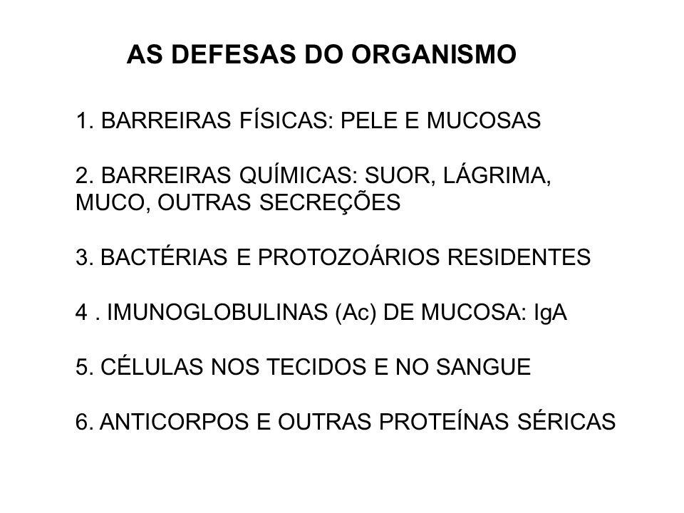 AS DEFESAS DO ORGANISMO 1.BARREIRAS FÍSICAS: PELE E MUCOSAS 2.BARREIRAS QUÍMICAS: SUOR, LÁGRIMA, MUCO, OUTRAS SECREÇÕES 3. BACTÉRIAS E PROTOZOÁRIOS RE