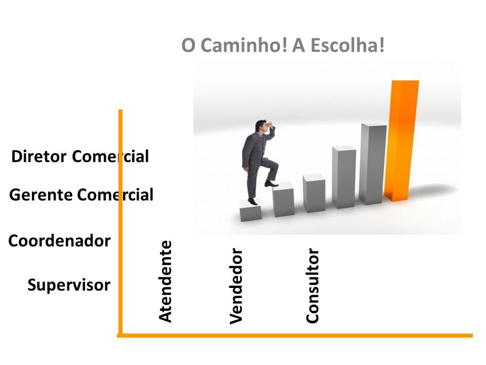Diretor Comercial Gerente Comercial Coordenador Supervisor Consultor Vendedor Atendente O Caminho! A Escolha!