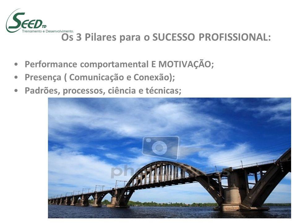 Os 3 Pilares para o SUCESSO PROFISSIONAL: Performance comportamental E MOTIVAÇÃO; Presença ( Comunicação e Conexão); Padrões, processos, ciência e téc