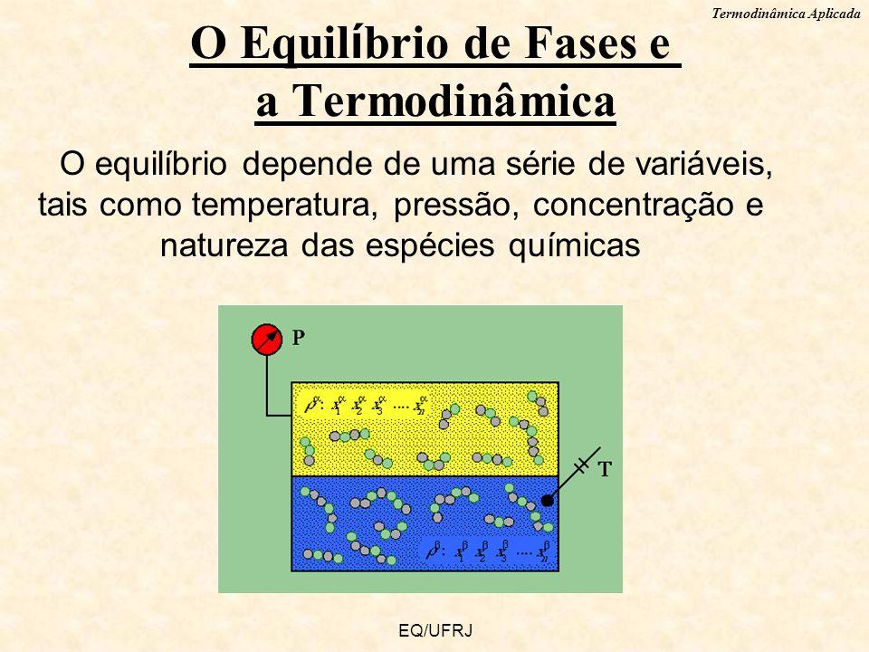 Termodinâmica Aplicada EQ/UFRJ O equilíbrio depende de uma série de variáveis, tais como temperatura, pressão, concentração e natureza das espécies qu