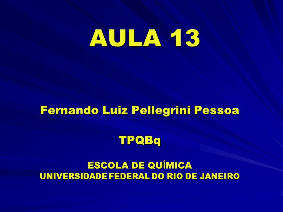 AULA 13 Fernando Luiz Pellegrini Pessoa TPQBq ESCOLA DE QU Í MICA UNIVERSIDADE FEDERAL DO RIO DE JANEIRO
