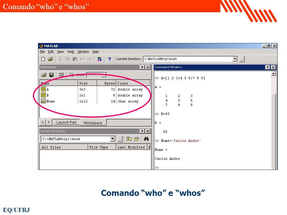 EQ/UFRJ Comando who e whos