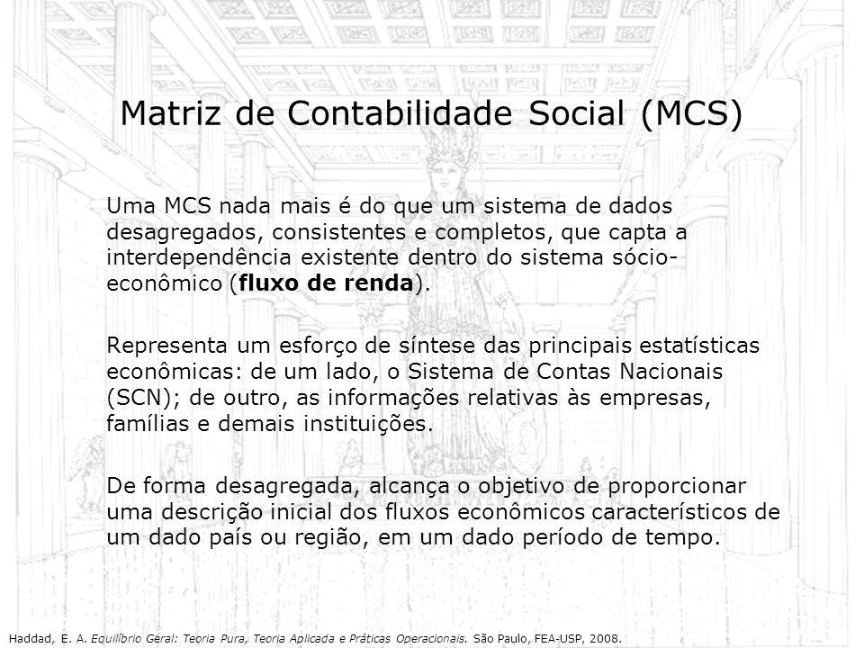 Matriz de Contabilidade Social (MCS) Uma MCS nada mais é do que um sistema de dados desagregados, consistentes e completos, que capta a interdependênc