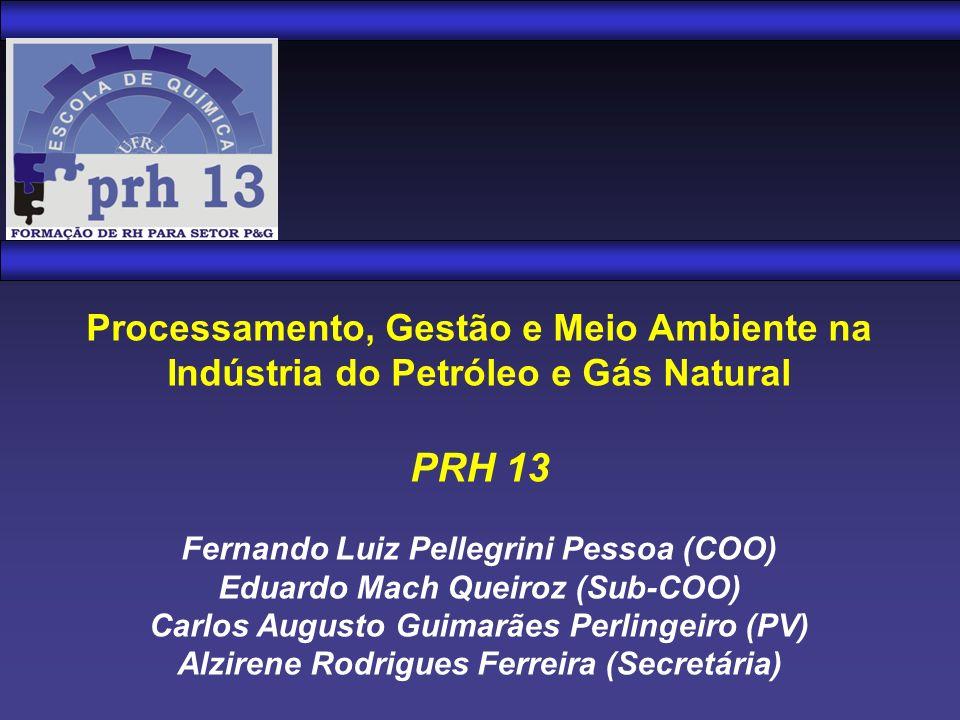 Processamento, Gestão e Meio Ambiente na Indústria do Petróleo e Gás Natural PRH 13 Fernando Luiz Pellegrini Pessoa (COO) Eduardo Mach Queiroz (Sub-CO