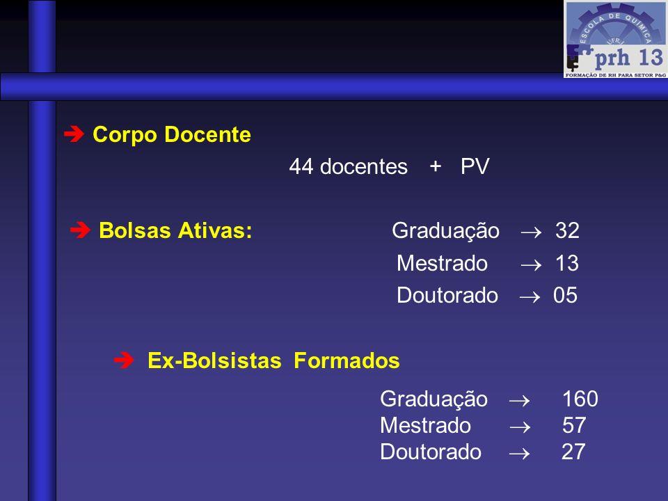Corpo Docente 44 docentes + PV Bolsas Ativas: Graduação 32 Mestrado 13 Doutorado 05 Ex-Bolsistas Formados Graduação 160 Mestrado 57 Doutorado 27