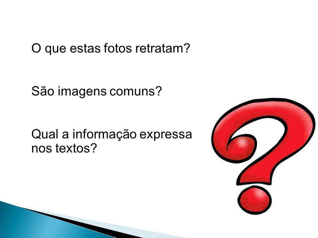 - Compreenda o sentido literal e conotativo do uso da língua no texto.