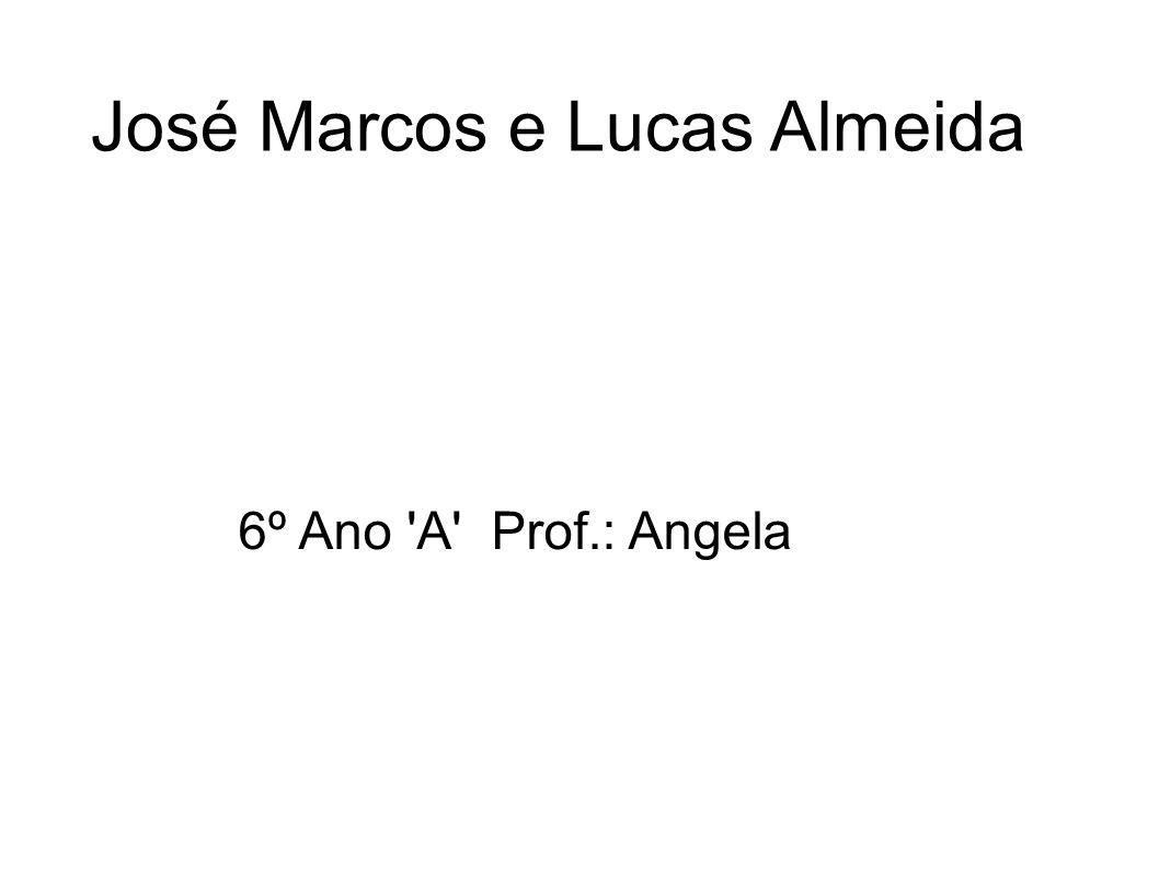 José Marcos e Lucas Almeida 6º Ano A Prof.: Angela
