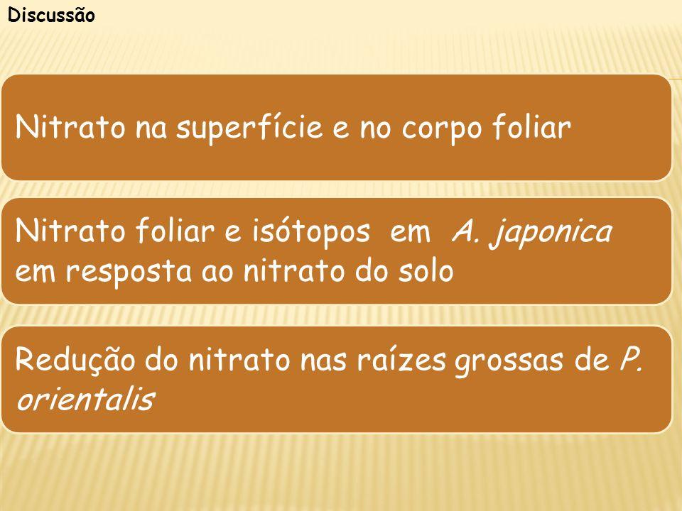 Discussão Nitrato na superfície e no corpo foliar Nitrato foliar e isótopos em A. japonica em resposta ao nitrato do solo Redução do nitrato nas raíze