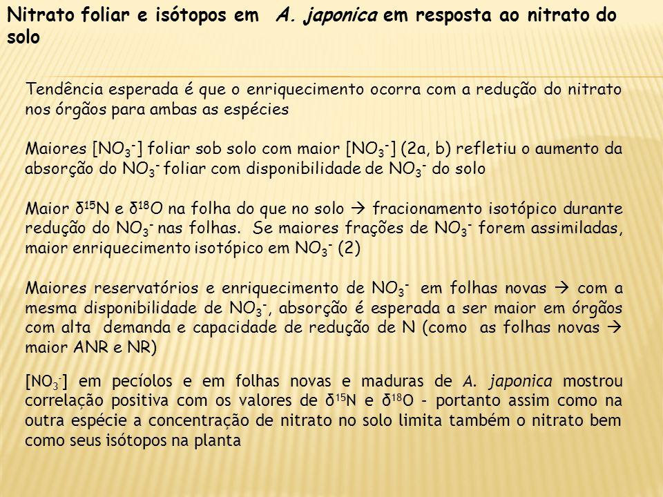 Nitrato foliar e isótopos em A. japonica em resposta ao nitrato do solo Tendência esperada é que o enriquecimento ocorra com a redução do nitrato nos