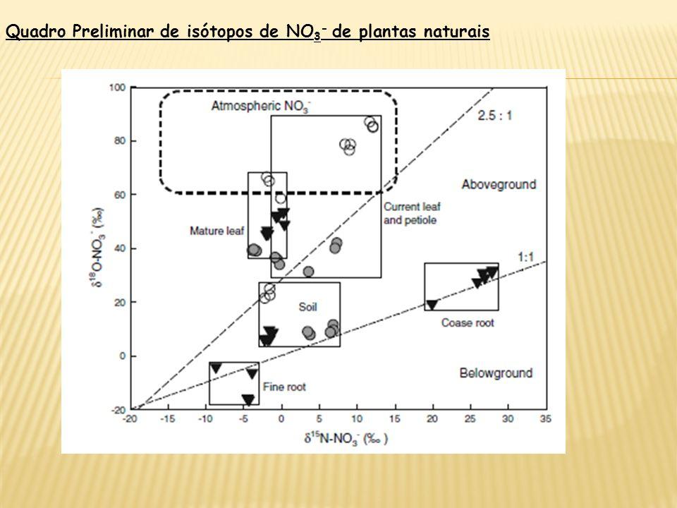 Em geral, a distribuição de isótopos de NO 3 - na planta tendeu a diferir entre órgãos subterrâneos e órgãos aéreos Isótopos de NO 3 - da raiz foram c