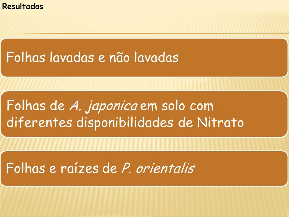 Resultados Folhas lavadas e não lavadas Folhas de A. japonica em solo com diferentes disponibilidades de Nitrato Folhas e raízes de P. orientalis
