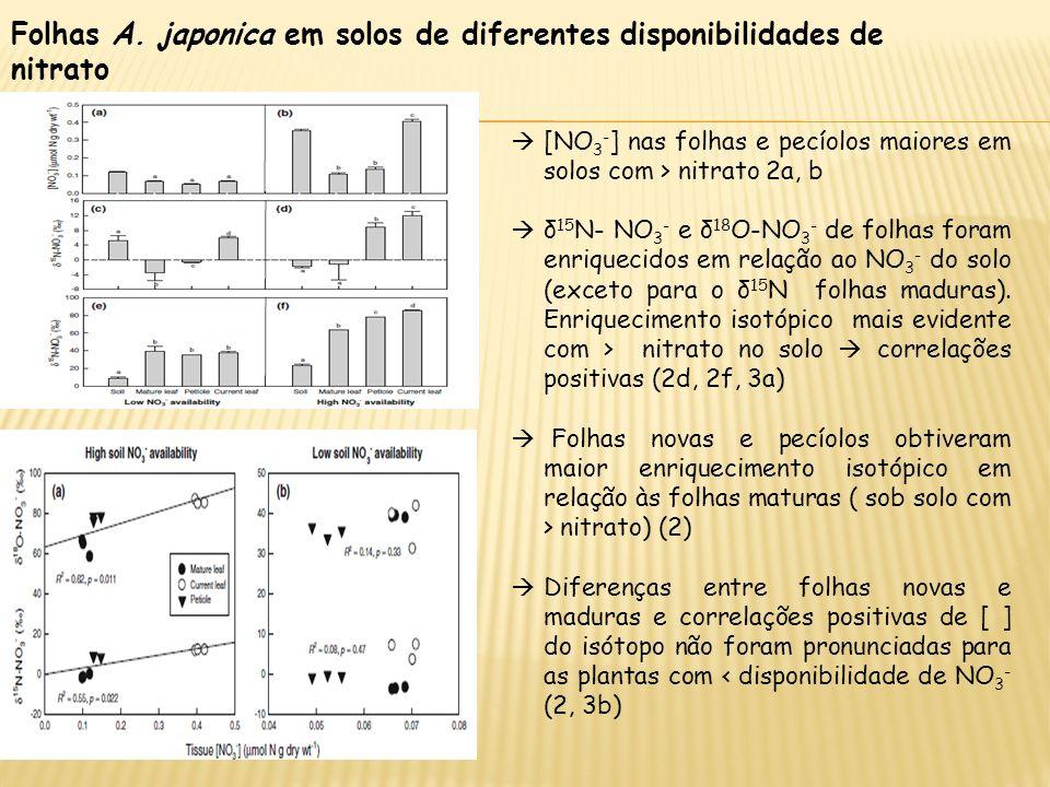 Folhas A. japonica em solos de diferentes disponibilidades de nitrato [NO 3 - ] nas folhas e pecíolos maiores em solos com > nitrato 2a, b δ 15 N- NO