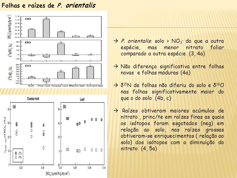 Folhas e raízes de P. orientalis P. orientalis: solo > NO 3 - do que a outra espécie, mas menor nitrato foliar comparado a outra espécie (3, 4a) Não d