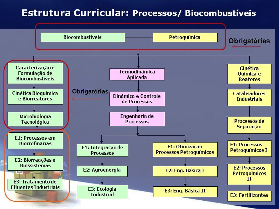 PetroquímicaBiocombustíveis Catalisadores Industriais Processos de Separação E1: Processos Petroquímicos I E2: Processos Petroquímicos II E3: Fertiliz