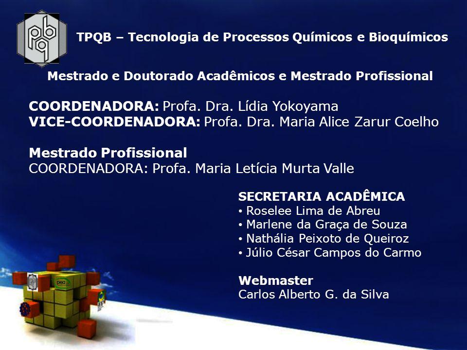 PRH - EQ-UFRJ – Processamento, Gestão e Meio Ambiente na Indústria do Petróleo e Gás Natural Atividades em nível de: Graduação (EQ) Mestrado (TPQB) Doutorado (TPQB) Formação de Profissionais nas Ênfases: Graduação Refino e Processamento (EQ,QI,EB) Tratamento de Resíduos e Meio Ambiente (EQ,QI e EB) Gestão e Regulação (EQ e QI) Engenharia de Petróleo (EQ) Pós-Graduação Petróleo e Gás