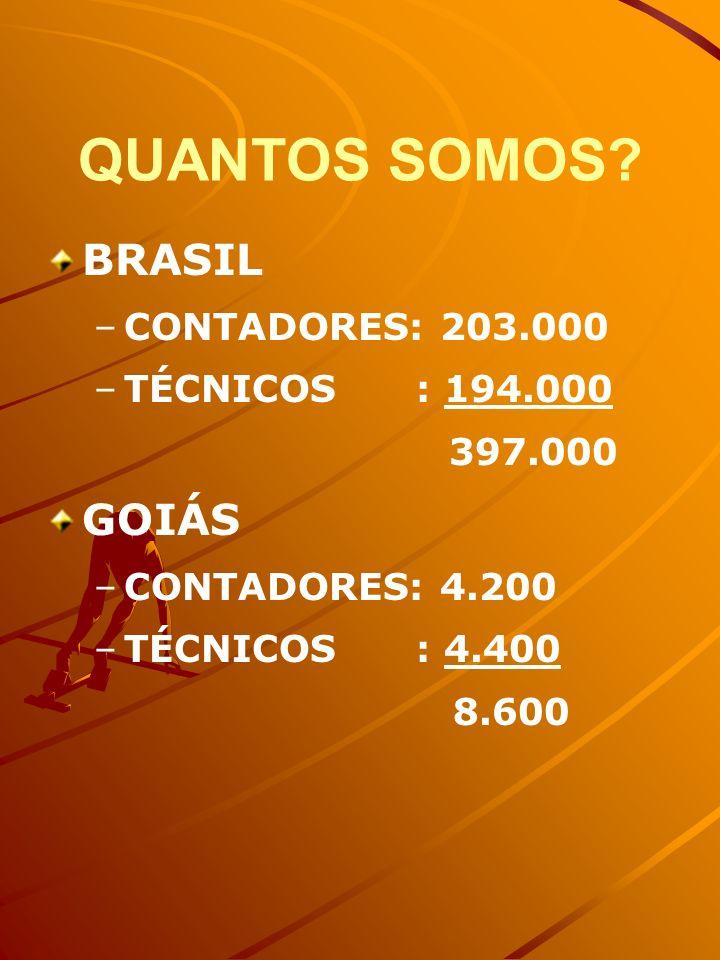 QUANTOS SOMOS? BRASIL – –CONTADORES: 203.000 – –TÉCNICOS : 194.000 397.000 GOIÁS – –CONTADORES: 4.200 – –TÉCNICOS : 4.400 8.600
