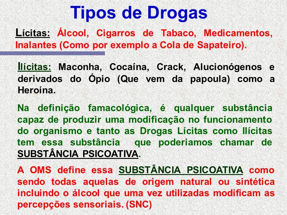Tipos de Drogas L ícitas: Álcool, Cigarros de Tabaco, Medicamentos, Inalantes (Como por exemplo a Cola de Sapateiro).