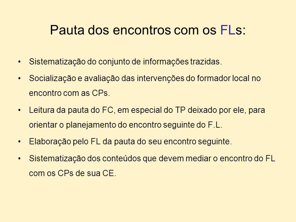 Pauta dos encontros com os FLs: Sistematização do conjunto de informações trazidas. Socialização e avaliação das intervenções do formador local no enc