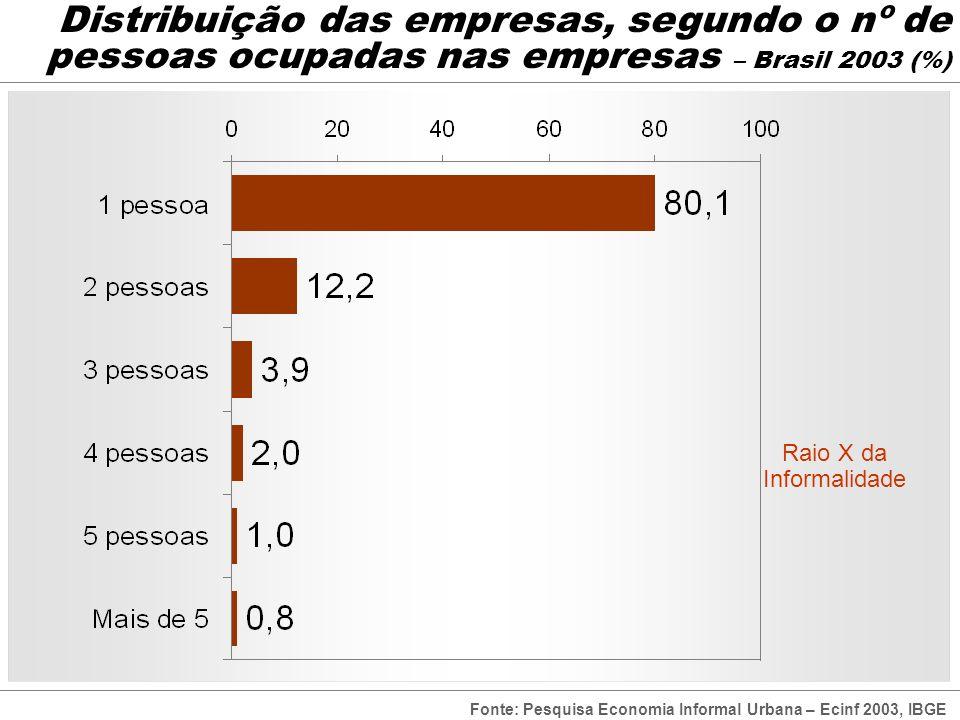 Distribuição das empresas, segundo o nº de pessoas ocupadas nas empresas – Brasil 2003 (%) Raio X da Informalidade Fonte: Pesquisa Economia Informal U