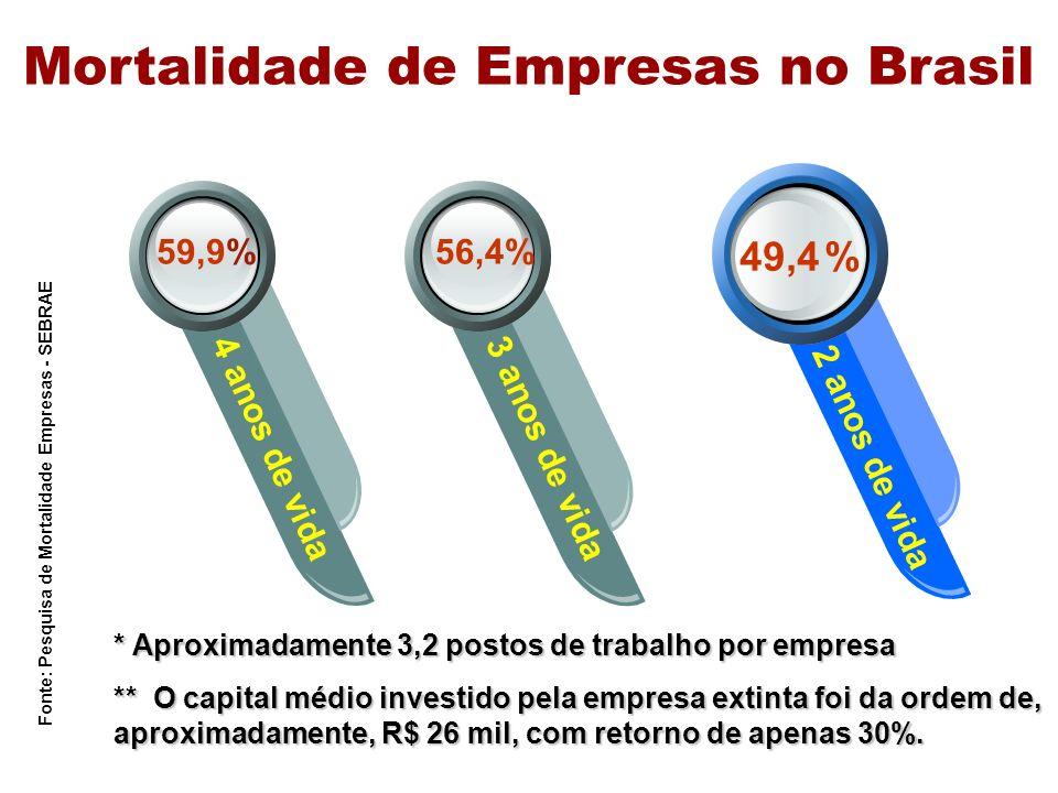 2000 2001 Empresas Fechadas 275.900276.874 Mortalidade de Empresas no Brasil Perda de Ocupações 925.202705.125 Desperdícios Econômicos R$ 6,6 BIR$ 6,7 BI 2002 219.905772.679684.9562,4 milhõesR$ 6,5 BIR$ 19,8 BI TOTAL Fonte: Pesquisa de Mortalidade Empresas - SEBRAE