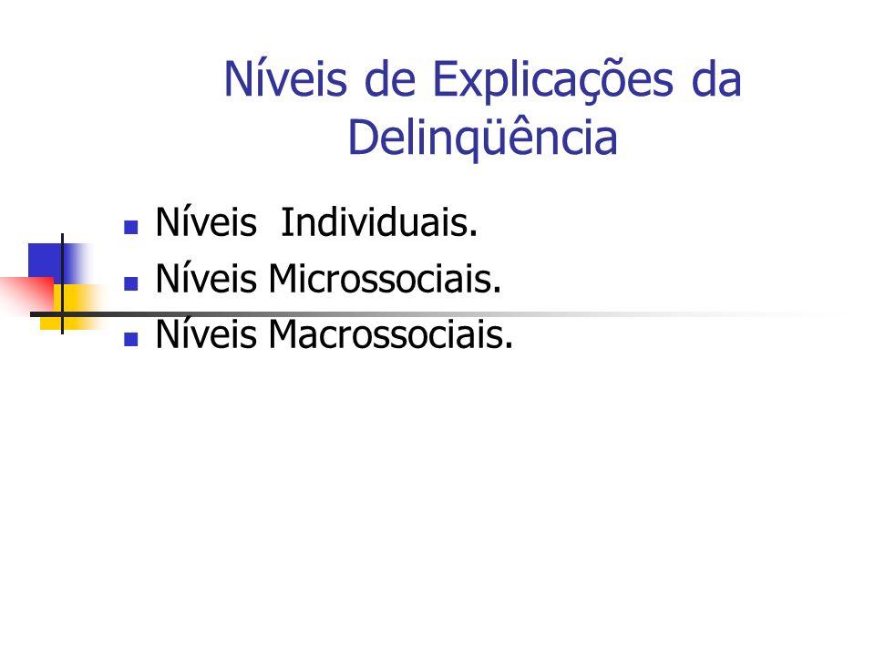 Níveis de Explicações da Delinqüência Níveis Individuais. Níveis Microssociais. Níveis Macrossociais.