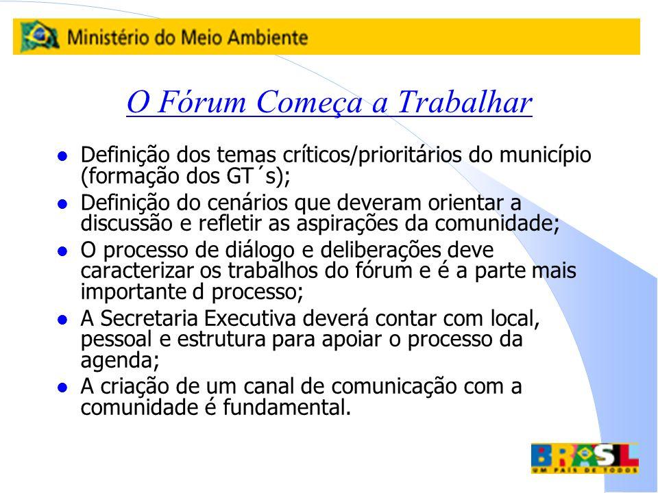O Fórum Começa a Trabalhar l Definição dos temas críticos/prioritários do município (formação dos GT´s); l Definição do cenários que deveram orientar