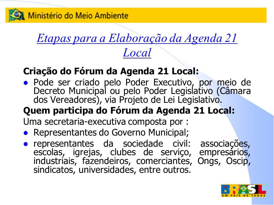 Etapas para a Elaboração da Agenda 21 Local Criação do Fórum da Agenda 21 Local: l Pode ser criado pelo Poder Executivo, por meio de Decreto Municipal