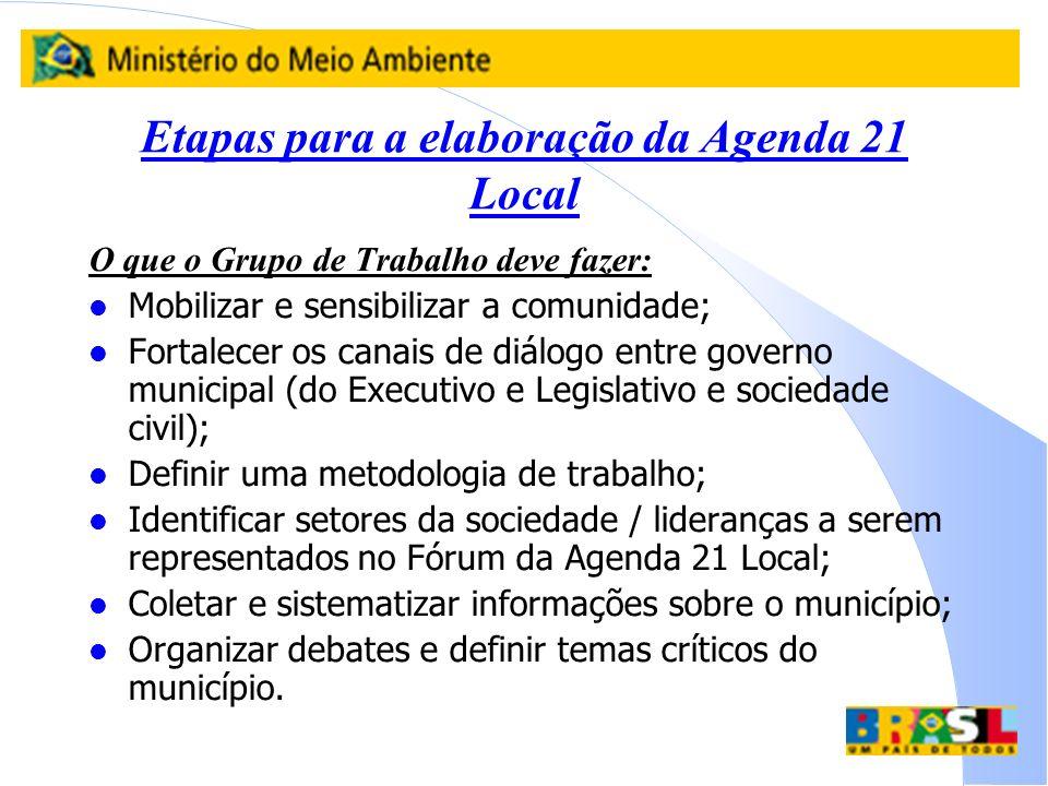 Etapas para a elaboração da Agenda 21 Local O que o Grupo de Trabalho deve fazer: l Mobilizar e sensibilizar a comunidade; l Fortalecer os canais de d