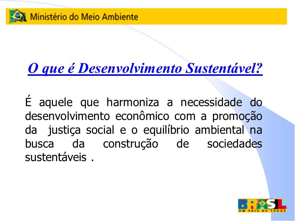 O que é Desenvolvimento Sustentável? É aquele que harmoniza a necessidade do desenvolvimento econômico com a promoção da justiça social e o equilíbrio