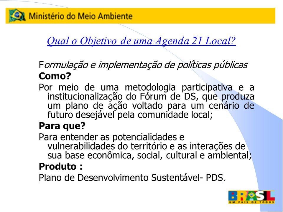 Qual o Objetivo de uma Agenda 21 Local? Formulação e implementação de políticas públicas Como? Por meio de uma metodologia participativa e a instituci