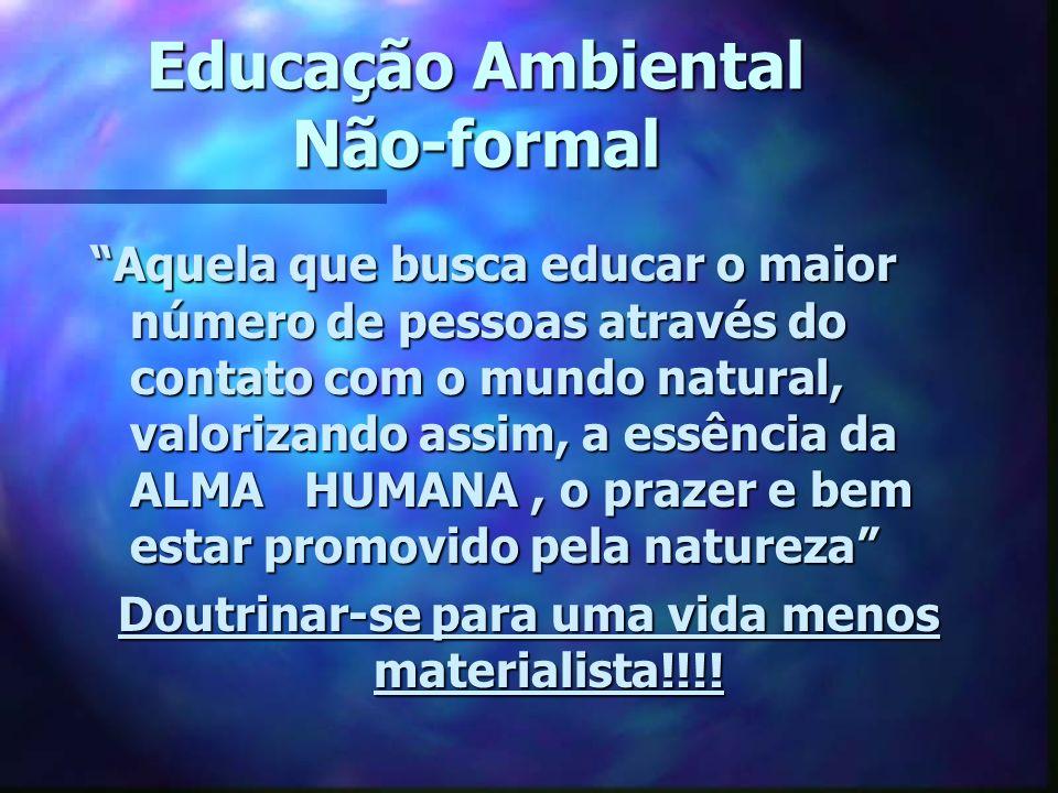 Educação Ambiental Não-formal Aquela que busca educar o maior número de pessoas através do contato com o mundo natural, valorizando assim, a essência
