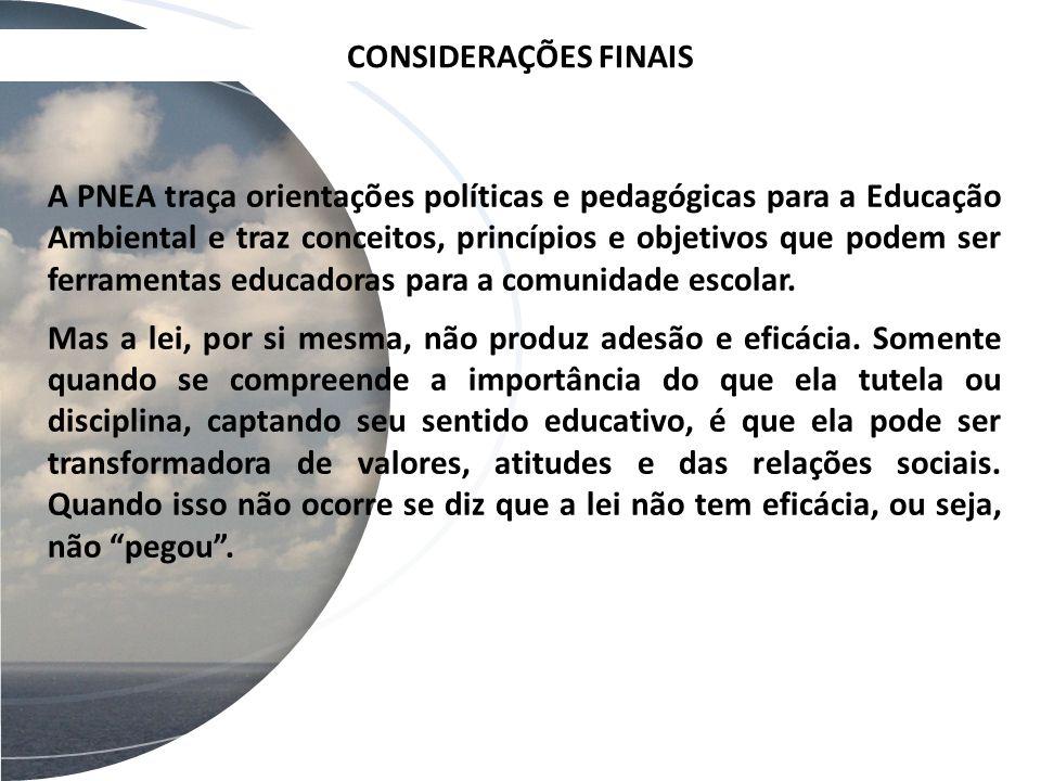 CONSIDERAÇÕES FINAIS A PNEA traça orientações políticas e pedagógicas para a Educação Ambiental e traz conceitos, princípios e objetivos que podem ser