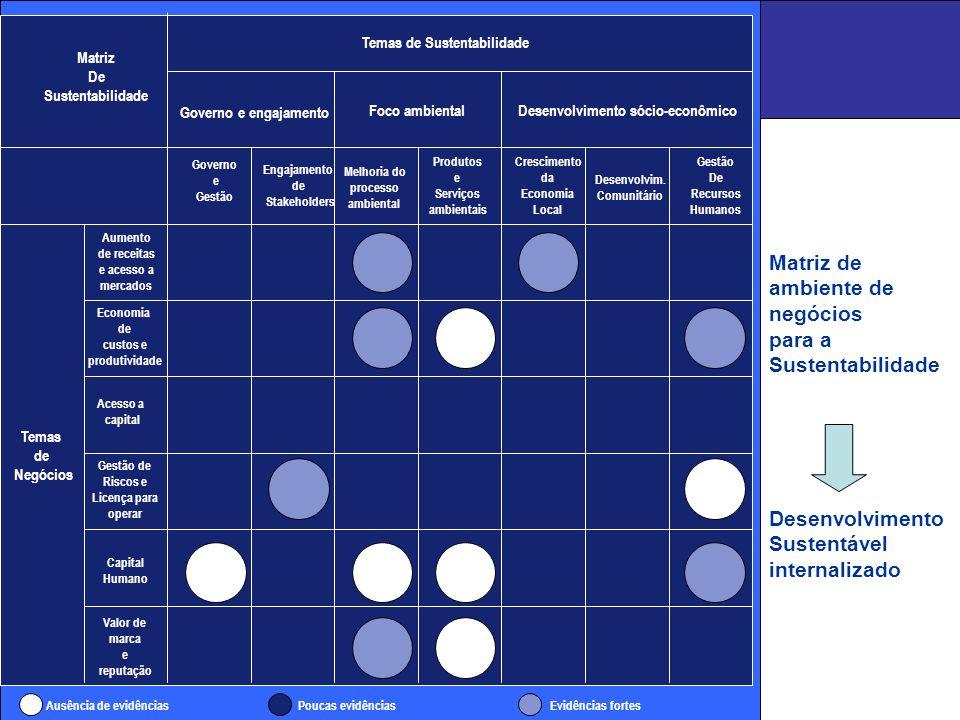 Matriz de ambiente de negócios para a Sustentabilidade Desenvolvimento Sustentável internalizado Matriz De Sustentabilidade Temas de Sustentabilidade