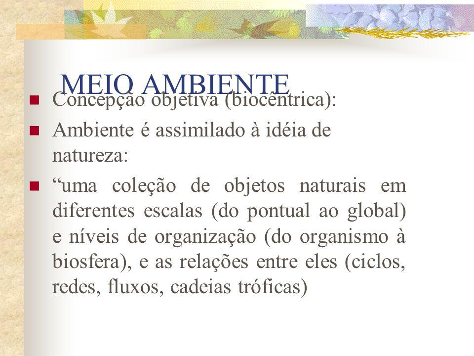 Agenda 21 brasileira: Ações Prioritárias 1) Produção e consumo sustentáveis contra a cultura do desperdício 2) Ecoeficiência e responsabilidade social das empresas 3) Retomada do planejamento estratégico, infra-estrutura e integração regional 4) Energia renovável e a biomassa