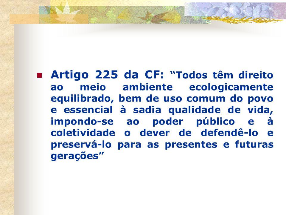 1997 – início do processo de construção da Agenda 21 brasileira (cerca de 40.000 pessoas envolvidas) Criou-se a Comissão de Políticas de Desenvolvimen
