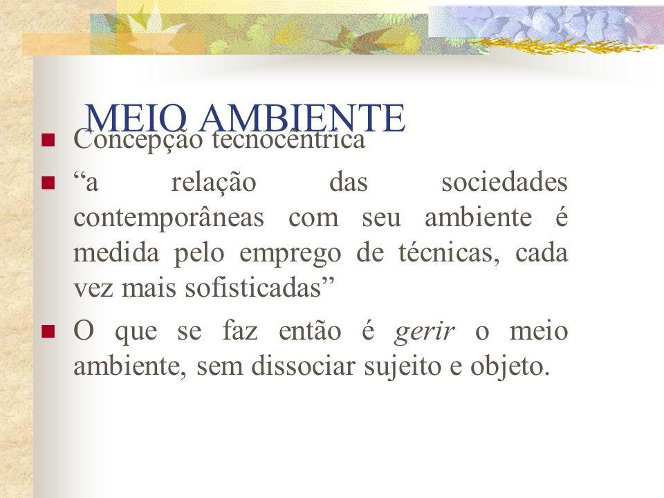 Agenda 21 brasileira: Ações Prioritárias 9) Universalizar o saneamento ambiental protegendo o ambiente e a saúde 10) Gestão do espaço urbano e a autoridade metropolitana 11) Desenvolvimento sustentável do Brasil rural 12) Promoção da agricultura sustentável