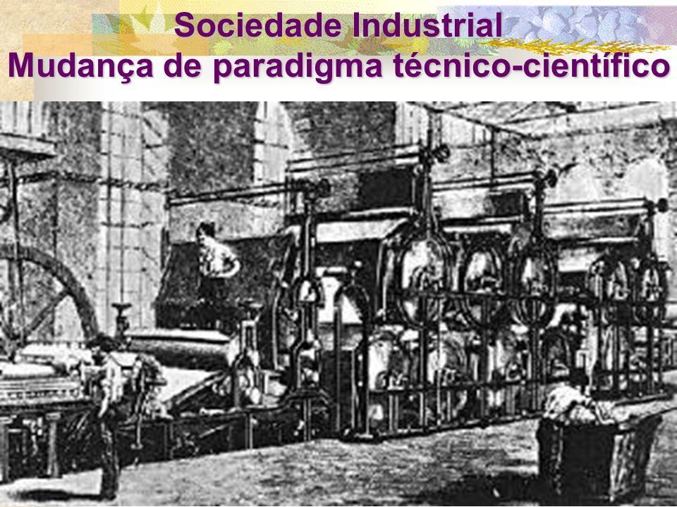 2) Crítica à Revolução Científica: consolidação do paradigma cartesiano, molda os valores culturais modernos e o projeto de ciência e tecnologia A ciê
