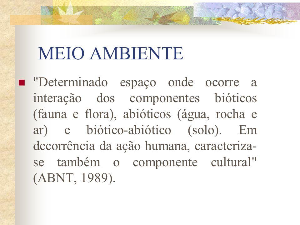 Resultou nos documentos Agenda 21 brasileira: Ações prioritárias Agenda 21 brasileira: Resultado da consulta nacional
