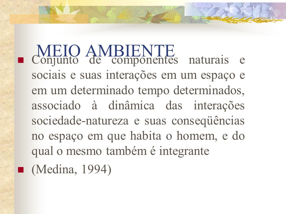 MEIO AMBIENTE Conjunto de componentes naturais e sociais e suas interações em um espaço e em um determinado tempo determinados, associado à dinâmica das interações sociedade-natureza e suas conseqüências no espaço em que habita o homem, e do qual o mesmo também é integrante (Medina, 1994)