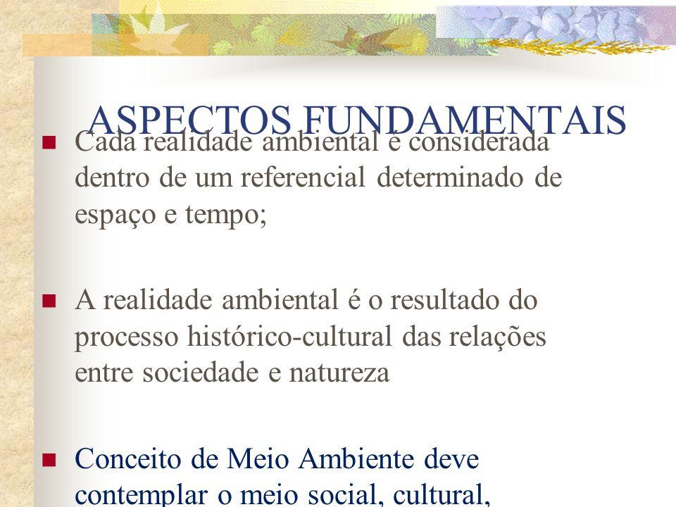 5) Ambientalismo empresarial: empresários que vinculam sua produção a certos critérios de Qualidade Total e às normas ISO (industrias de alimentos e produtos).