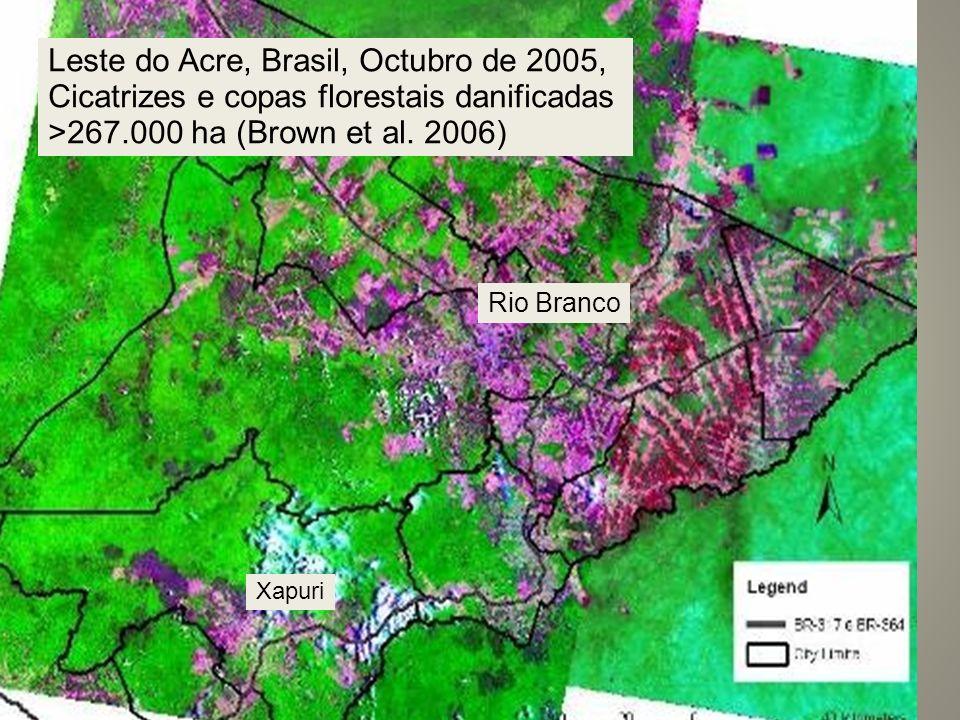 Leste do Acre, Brasil, Octubro de 2005, Cicatrizes e copas florestais danificadas >267.000 ha (Brown et al. 2006) Rio Branco Xapuri