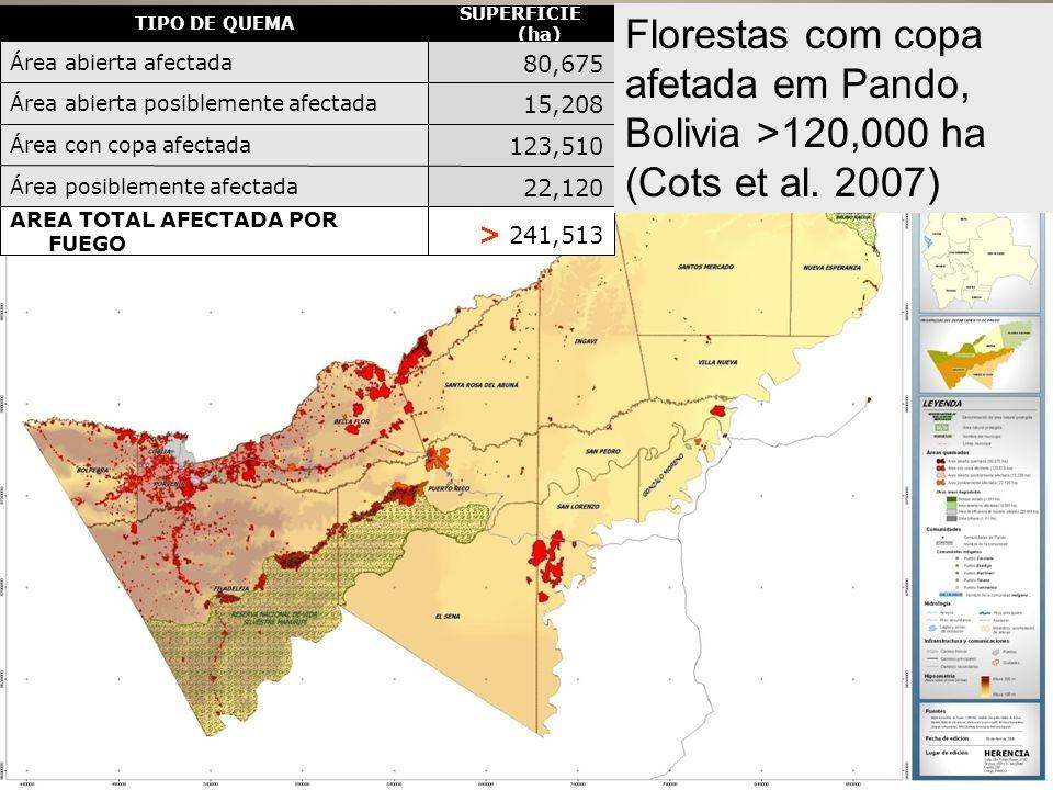 Resultados > 241,513 AREA TOTAL AFECTADA POR FUEGO 22,120 Área posiblemente afectada 123,510 Área con copa afectada 15,208 Área abierta posiblemente a
