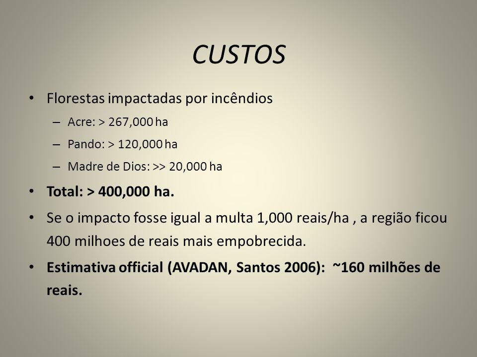 CUSTOS Florestas impactadas por incêndios – Acre: > 267,000 ha – Pando: > 120,000 ha – Madre de Dios: >> 20,000 ha Total: > 400,000 ha. Se o impacto f